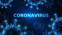 Les théories les plus insolites sur l'origine du coronavirus