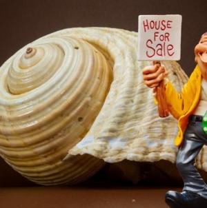 Vente immobilière : comment passer une annonce insolite mais sérieuse ?